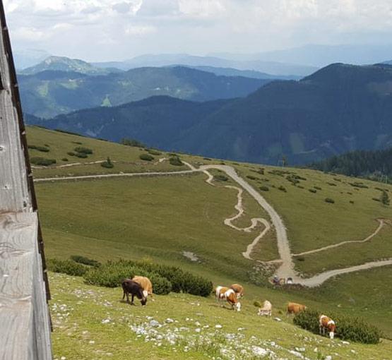Windgrubentrail