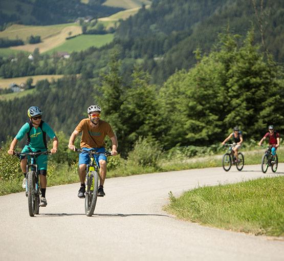 Mountainbike Infos